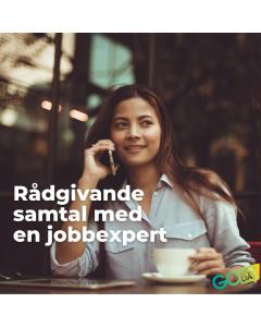 Rådgivande samtal med jobbexpert